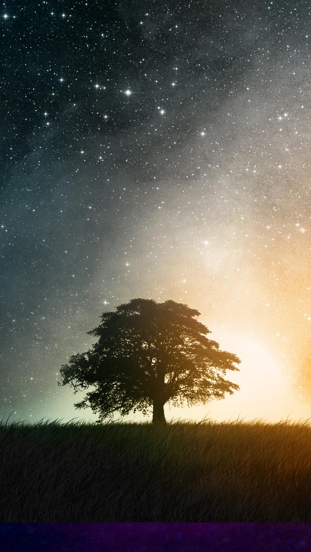 星空と木のiphoneスマホ壁紙